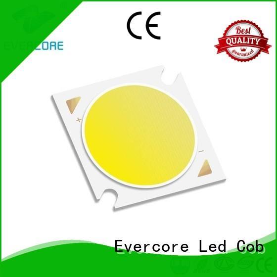 Evercore lightdown rgb cob led factory for sale