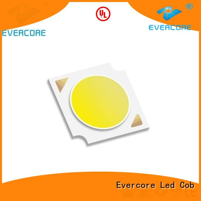 Evercore modules Led Cob Chip supplier for distribution