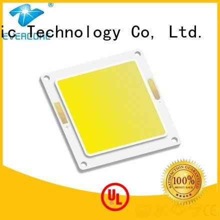 modules cob led Evercore Cold light