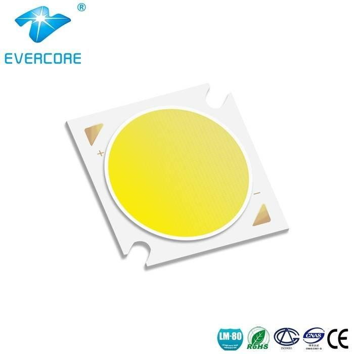 H19 LED COB Modules