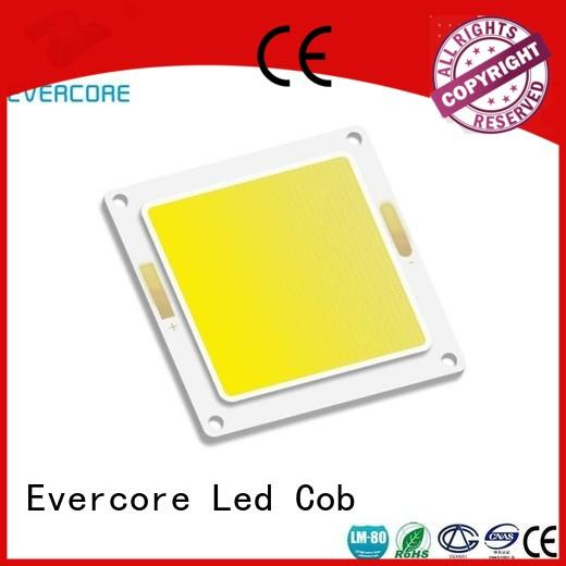 Evercore h66 spot led cob from China for distribution