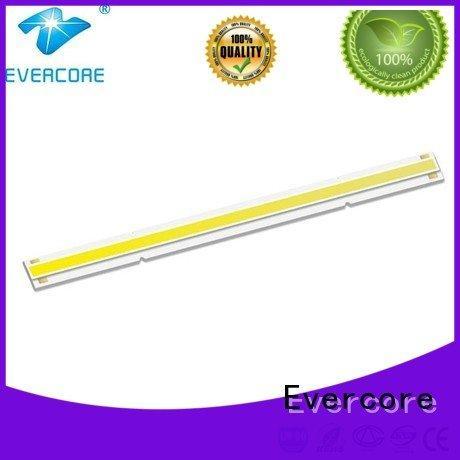 Evercore Universal Cob Led Module cob led