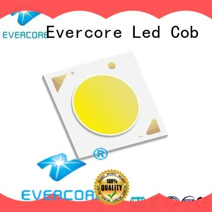 Evercore light Cob Led factory for sale