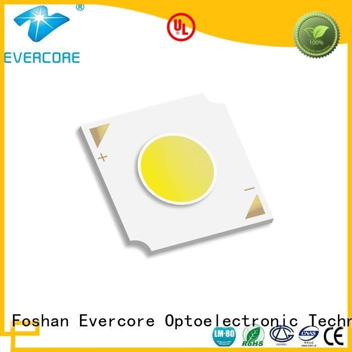 10W linear Cob Led Module color Evercore
