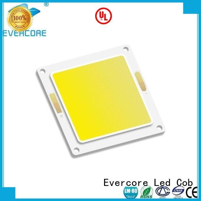 high lighting efficiency cob Cold light Evercore