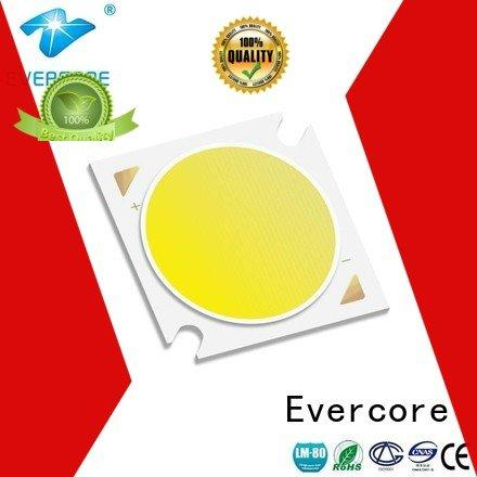 Quality Evercore Brand 10W Cob Led Module