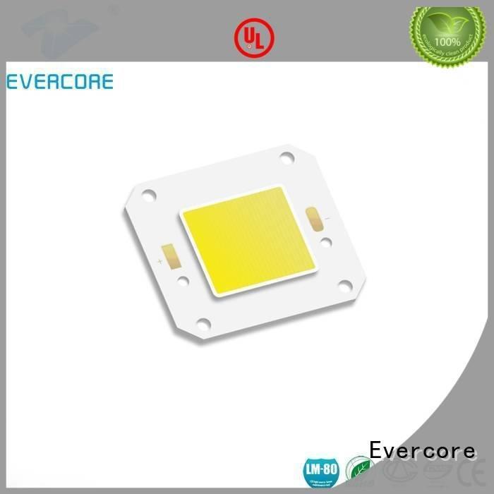 cob modules led Cold light Evercore