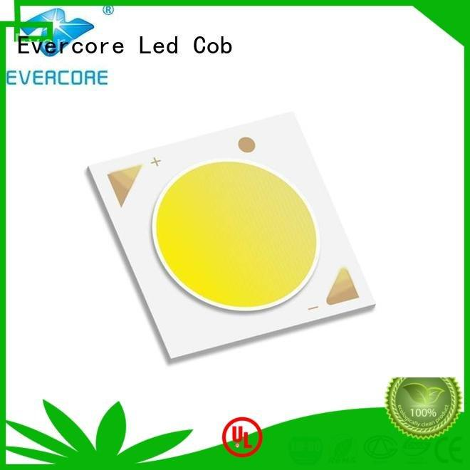 Quality commercial  lighting cob leds Evercore Brand modules Cob Led Module