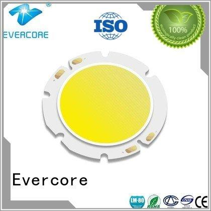 modules led cob commercial  lighting cob leds 10W Evercore Brand