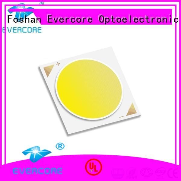 Evercore cheap rgb cob led factory for sale