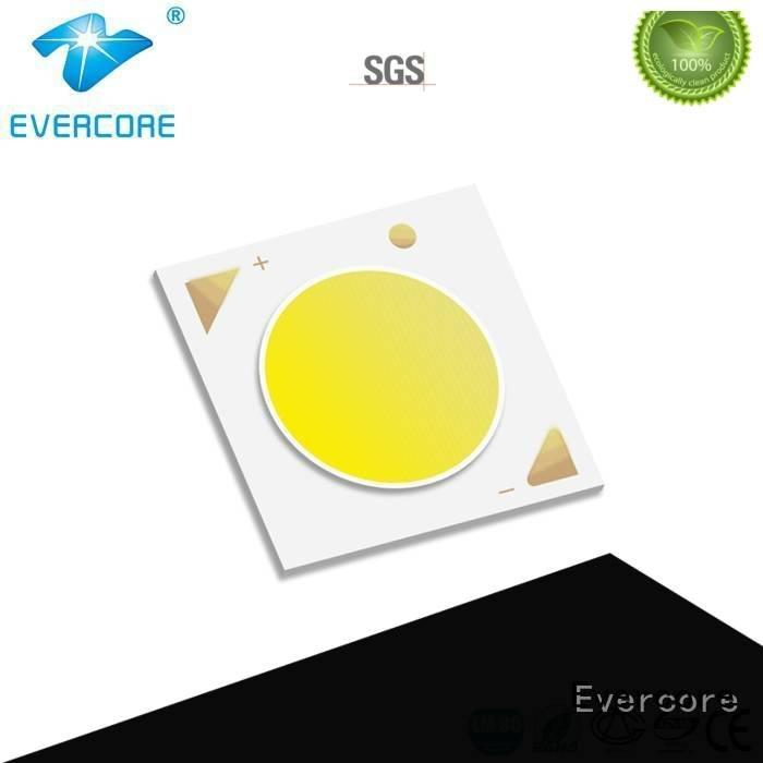cob linear Cob Led Module led Evercore