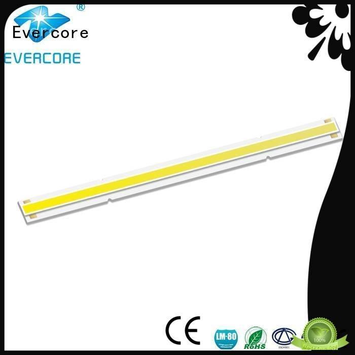linear High lumens Evercore commercial  lighting cob leds