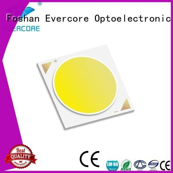 modules 10W Evercore commercial  lighting cob leds
