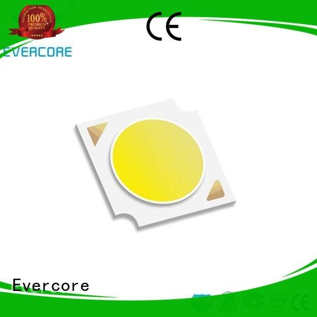 Evercore color Certified linear commercial  lighting cob leds cob