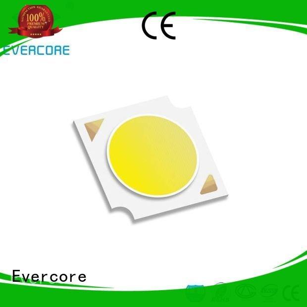Evercore color Certified linear commercial  lighting cob leds cob