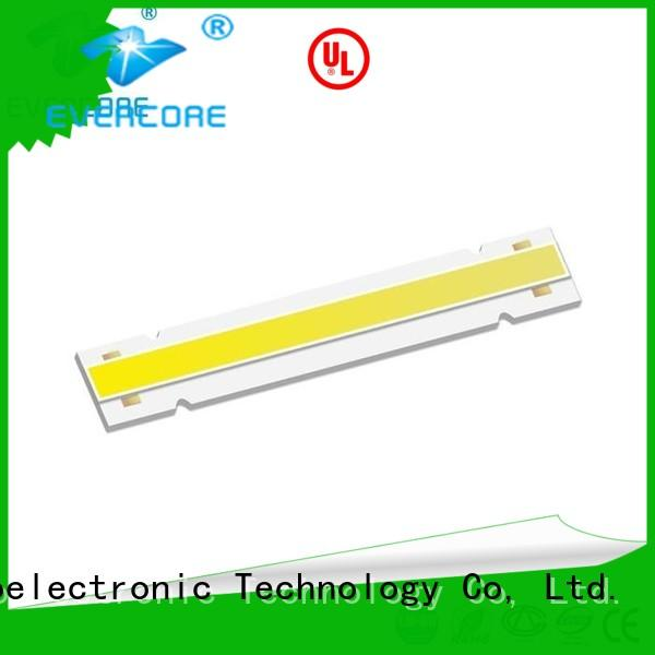 Evercore Low cost Led Cob Chip factory for sale
