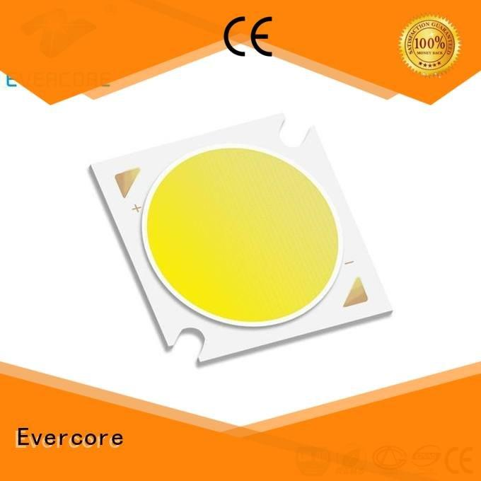 High lumens Universal Cob Led Module 10W Evercore