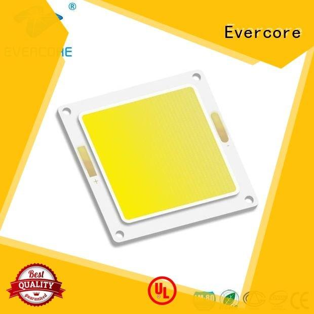 high lighting efficiency cob Cold light led Evercore