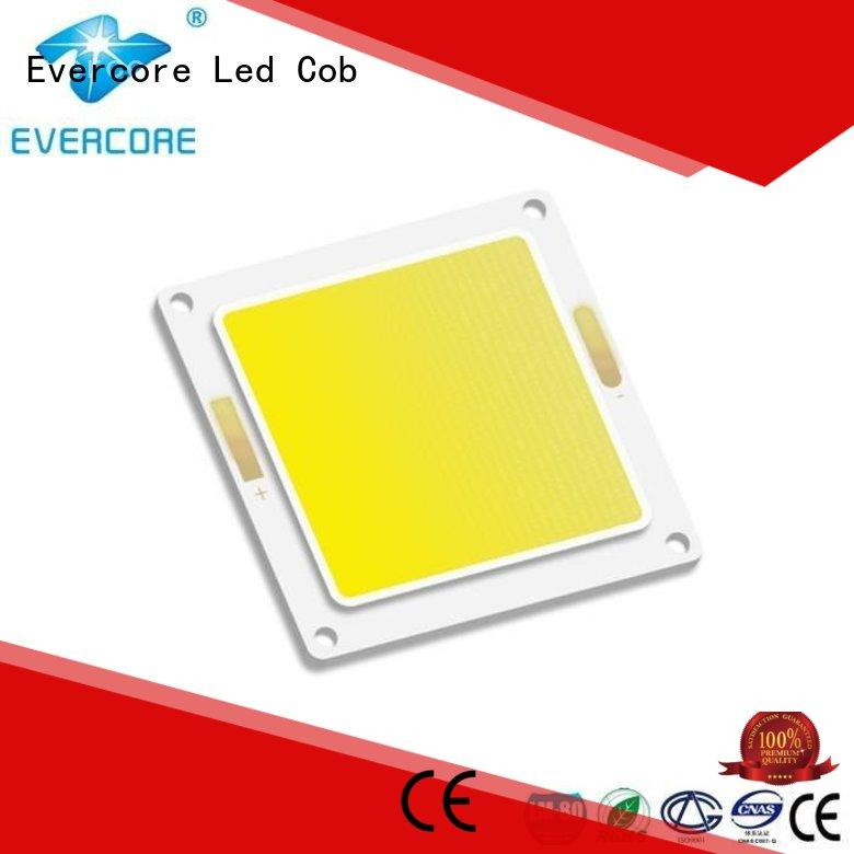 Hot high lighting efficiency cob Evercore Brand