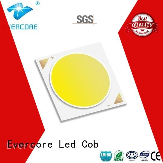 Evercore bh1816 rgb cob led supplier for sale