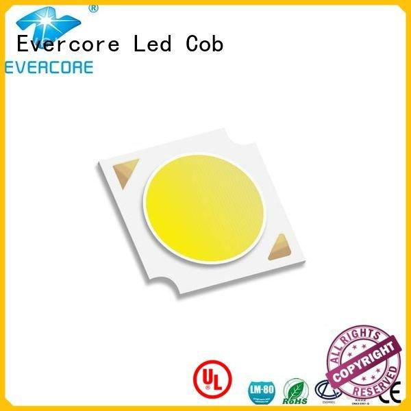 Evercore cob Certified High CRI commercial  lighting cob leds linear
