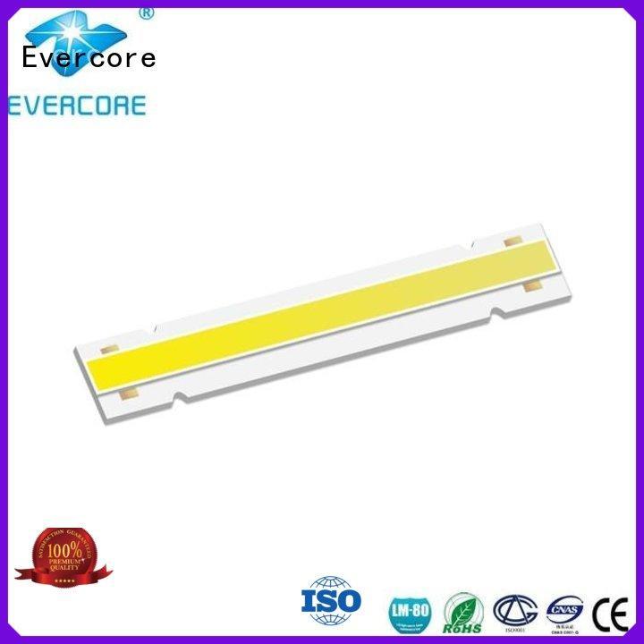 Evercore green rgb cob led manufacturer for lighting