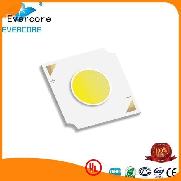 Evercore commercial  lighting cob leds linear High lumens led