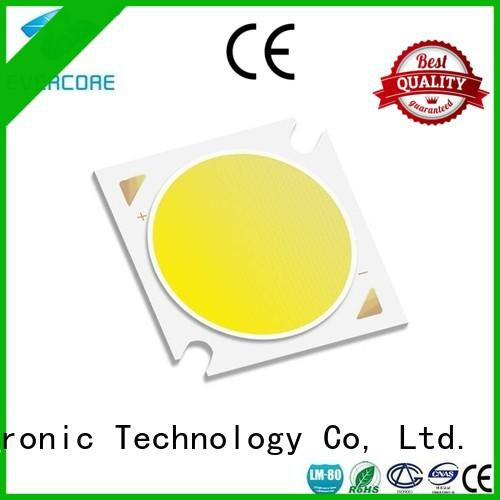 Evercore cheap Cob Led supplier for lighting