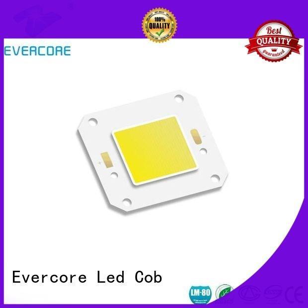 Hot high lighting efficiency led modules cob Evercore Brand