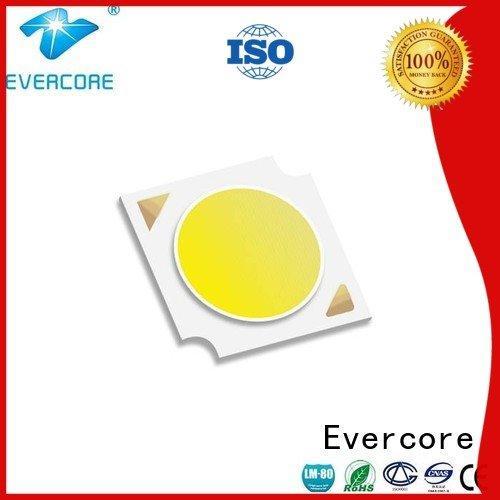 Certified Cob Led Module LM-80 Evercore