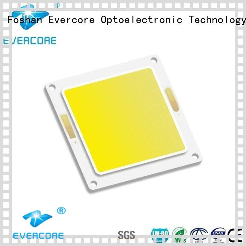 Evercore lamp buy outside lights from China for distribution