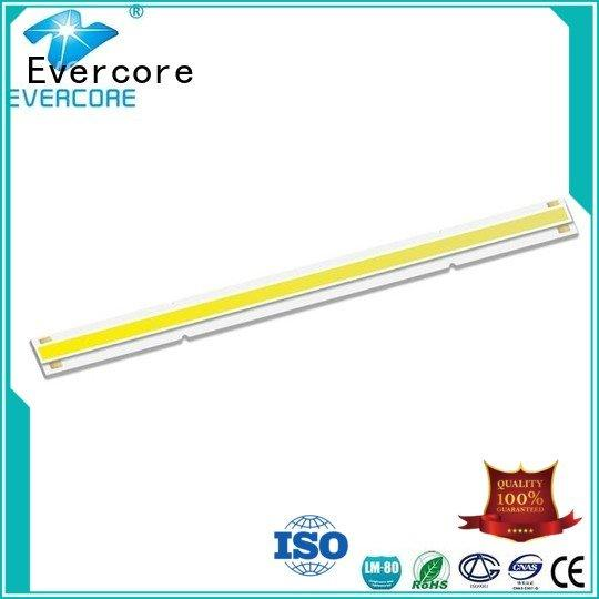 Evercore Brand led commercial  lighting cob leds High lumens LM-80