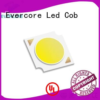 Evercore h18 Cob Led manufacturer for lighting