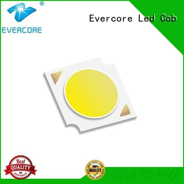 Evercore commercial  lighting cob leds High lumens 36W linear Certified