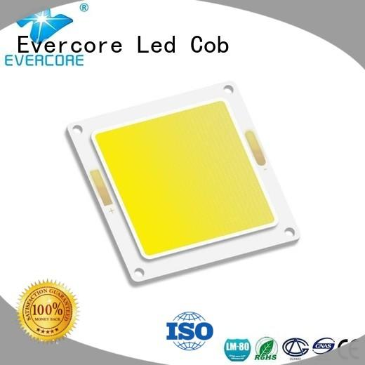 Evercore 20w80w led outside lights exporter for lighting