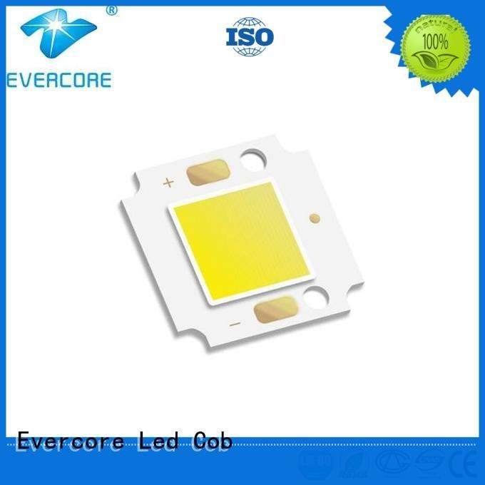 OEM Cold light cob led high lighting efficiency