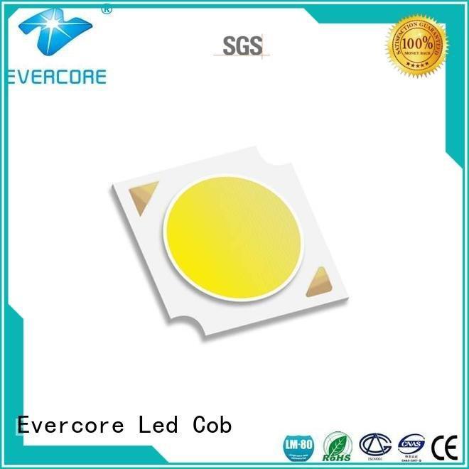 Evercore Brand Universal High lumens High CRI Cob Led Module