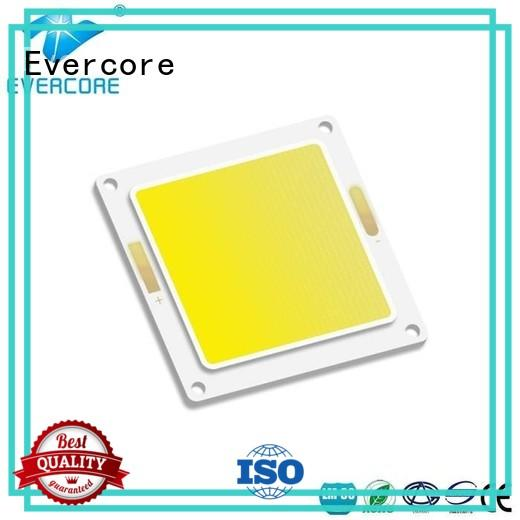 Evercore 20w80w buy outside lights from China for lighting