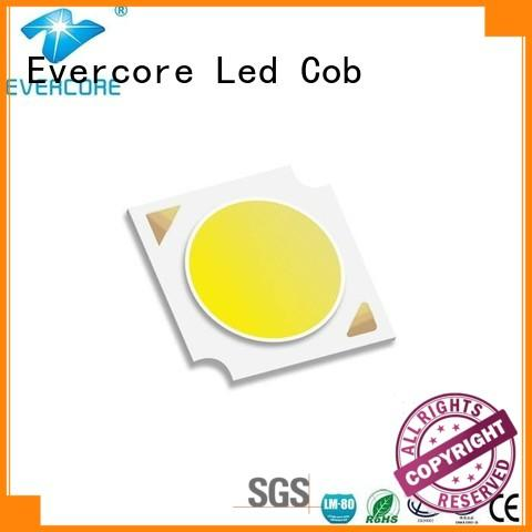 Evercore green Cob Led factory for distribution