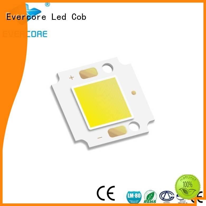 high lighting efficiency modules cob OEM Cold light Evercore