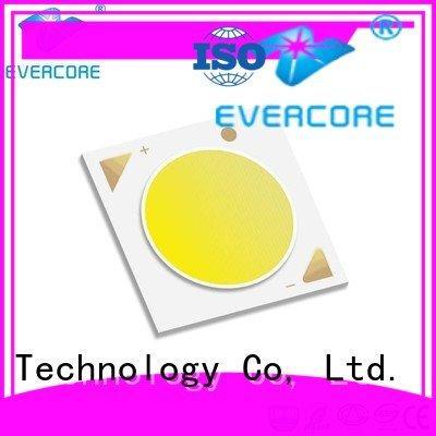 Evercore Brand color Universal Cob Led Module