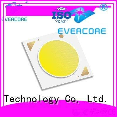 Evercore Brand color Universal Cob Led Module