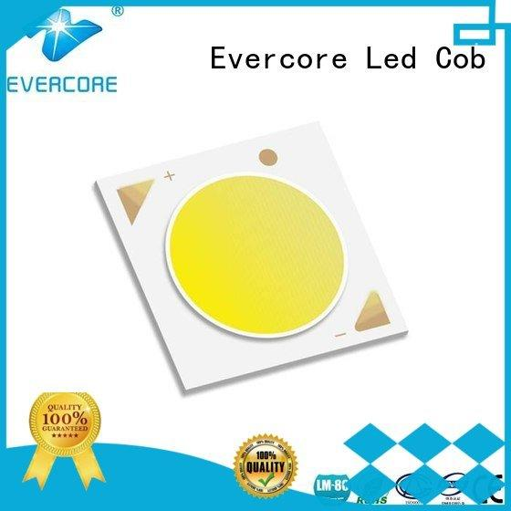Evercore commercial  lighting cob leds 36W High lumens Universal modules
