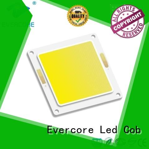 Evercore stable supply chip cob factory for sale