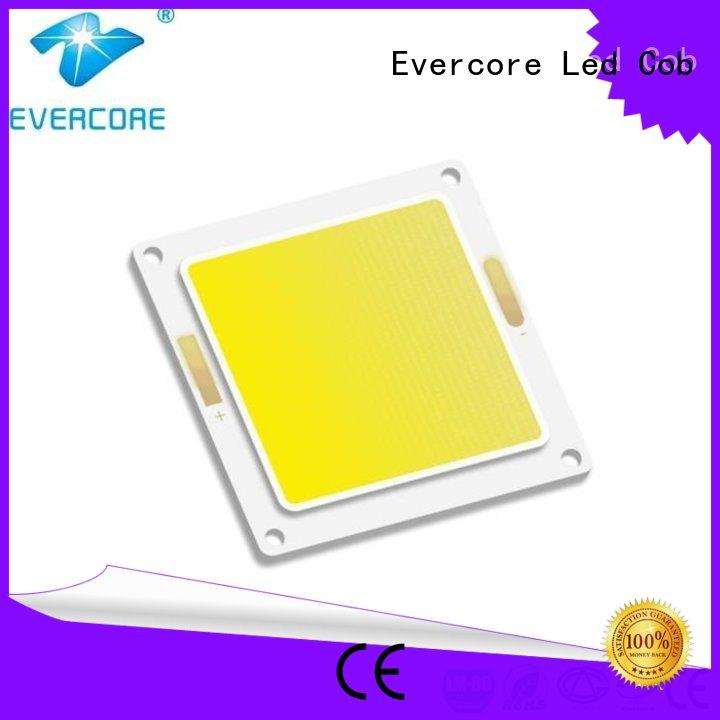 Evercore wholesale chip cob factory for sale
