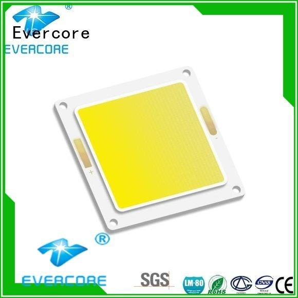 Custom Flip Chip cob led led Evercore
