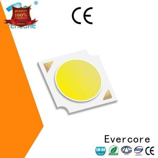 led chip cob led Flip Chip Evercore Warranty