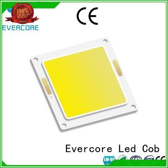 OEM led chip led cob cob Flip Chip