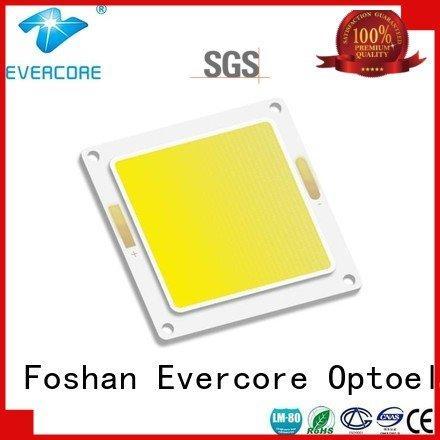 led Hot led chip cob Flip Chip led Evercore cob
