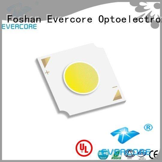 led chip led Flip Chip Evercore Brand